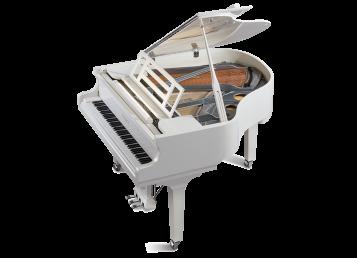 162 – DYNAMIC I مهم ترین مزیت پیانو فویریخ