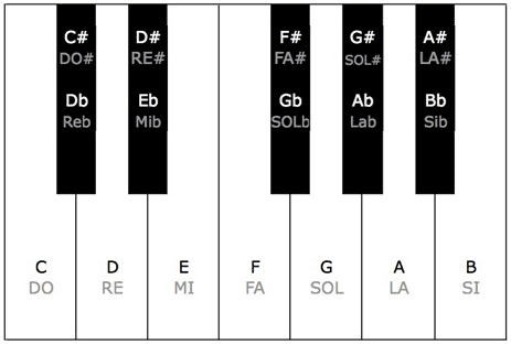 تعداد کلیدهای پیانو